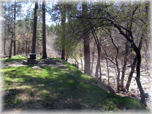 Pine Flat Campground