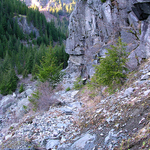 Carbon Glacier Trail