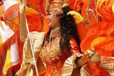 Carnival In Tokyo