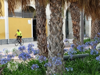 Cartagena Park Scene With Cyclist - Spain Murcia