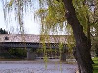 Cass River