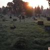 Cathay Cemetery