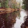 Cedar River North State Forest Campground