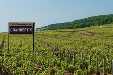 Chambertin Vineyard Sign-Board - Côte De Nuits Subregion Of Burgundy
