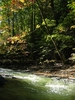 Chautauqua Creek
