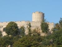 Chateau de Fallavier