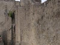 Chateau des Adhemar