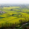 Chengdu Plain