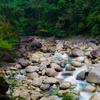 Assam - Meghalaya - Arunachal Pradesh Tour Package