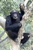 Chhajju Kanpur Zoo