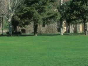 Citadel of Roses