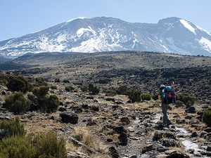 Climbing Kilimanjaro Success Trip Photos