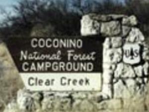 Coconino Clear Creek