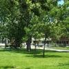 College De Bois De Boulogne 1