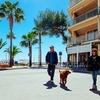 Colonia De Sant Jordi - Mallorca - Balearic Islands