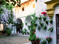 Convent of Santa Cruz