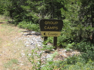 Coyote Group Campground