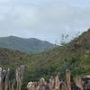 Curieuse Island Rocks