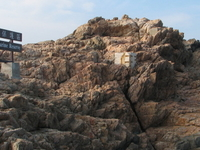 Cape D'Aguilar Marine Reserve