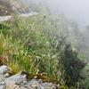 Camino Inca 0