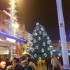 Christmas Tree On Ban Jelacic Square
