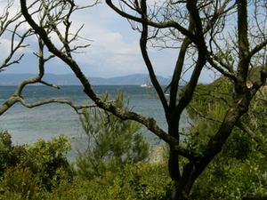 Port-Cros National Park