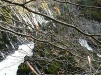 Conwy Falls