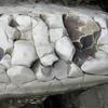 Crumbling White Rock