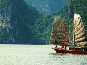 Free Approve Visa Letter for Booking Halong Bay Cruises Photos