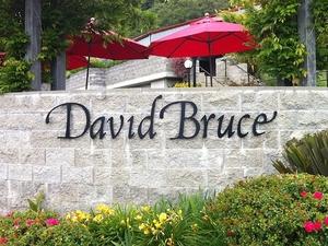 David Bruce Winery