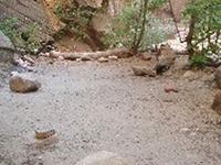 Deep Creek Campsite