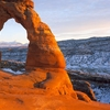 Delicatearch, Arches National Park