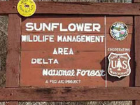Delta National Forest