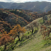 Del Valle Regional Park, Eagle Crest Trail