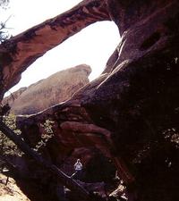Devils Garden Primitive Loop Trail