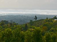 Dihang Dibang Biosphere Reserve