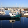 Digby Harbour Annapolis Basin