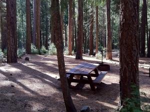 Dimond O Campground