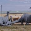 Dinosaur Family Cerillos Rd Industrial Park