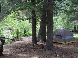 Spruces Campground