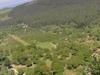 Djouce  Mountain Looking East