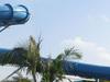 Dolphin Plunge Slides