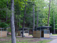 Douthat State Park Campground