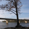 Drummondville Bridge