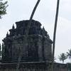 14th Century - Abandoned Borobudur Buddhist Temples