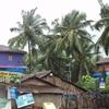 Calangute Village - Goa - India