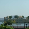 Jal Mahal From The Garden