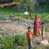 Small Farm Outside Ranakpur
