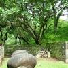 Elephanta Caves Artifact