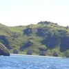 Sebayur Island Coastline